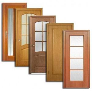Двери, дверные блоки Тары